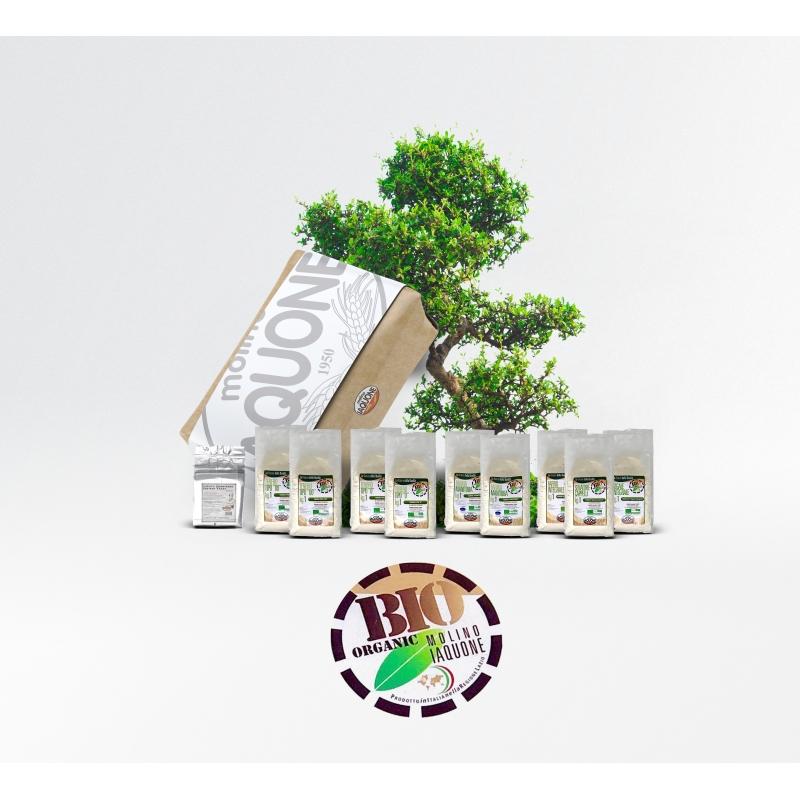 Bio Box